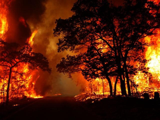 عندما أحترق بيت الجيران ! + فرق الإنقاذ في تشيلي !! + فكرة