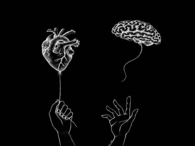 المشاعر والذاكرة ؟!