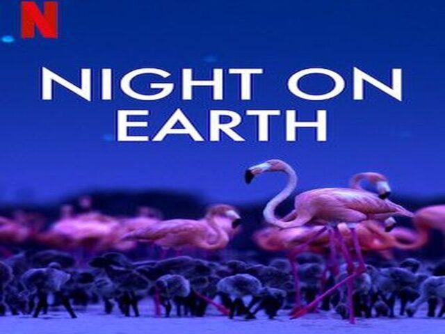 Night on Earth الليل على كوكبنا